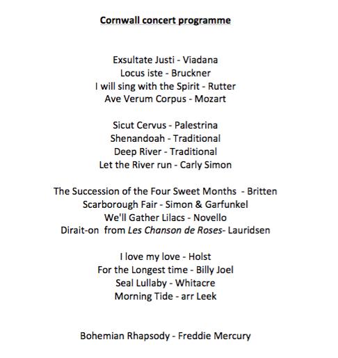 CitySound Cornwall concertprogramme
